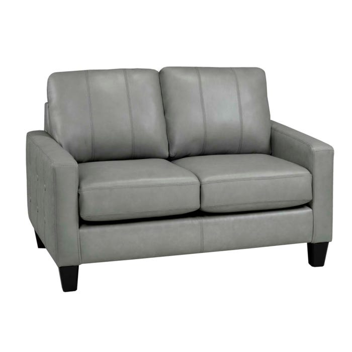 Superb Sofa By Fancy Regent Collection Zurick Leather Loveseat Slate Grey Finish 4351 2 Inzonedesignstudio Interior Chair Design Inzonedesignstudiocom