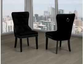 Titus Furniture Dining Chair (Set of 2) in Black Velvet T246B